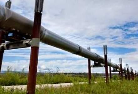Gazprom ar putea construi o conducta de petrol intre Pitesti si Pancevo (Serbia)