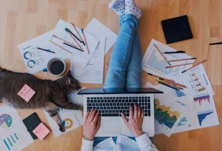 STUDIU: Bucureștenii preferă lucrul hibrid - de acasă și de la birou