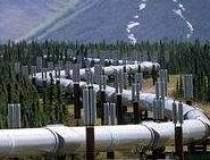 BP se opune protectionismului
