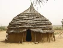 Masacru în Niger: 100 de...