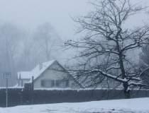 Furtună puternică de zăpadă...