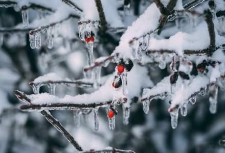 După furtuna de zăpadă din Spania, țara se pregătește pentru un val neobișnuit de frig
