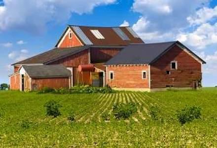 Seful SIF Imobiliare: Nu vom face agricultura. Investitia de 6 mil. euro va incepe sa fie amortizata peste un an de zile