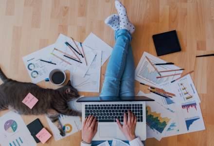 Sondaj: Angajaţii care lucrează de acasă reprezintă 60% din forţa de muncă la nivel global
