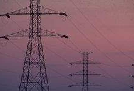 Enel a finalizat achizitia a 25% din Endesa pentru 9,6 mld. euro