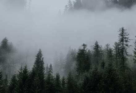 Cod galben de ceață în mai mult județe din România