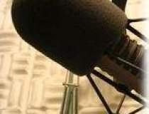 Audienta radiourilor online...