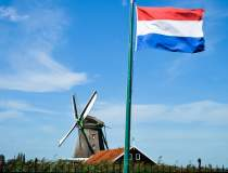 Olanda ar putea fi...
