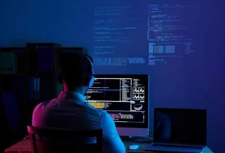 Care sunt principiile găzduirii web competitive?