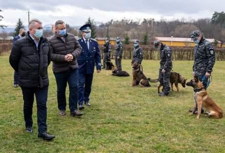 Lucian Bode: Centrul Chinologic de la Sibiu instruieşte câini pentru detectarea persoanelor infectate cu COVID