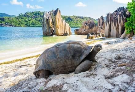 Unde fugim de ger și zăpadă: Cinci dintre cele mai frumoase insule exotice din lume