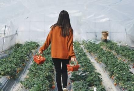 Program pentru fermierii la început de drum: cum poți învăța să faci business în agricultură regenerativă