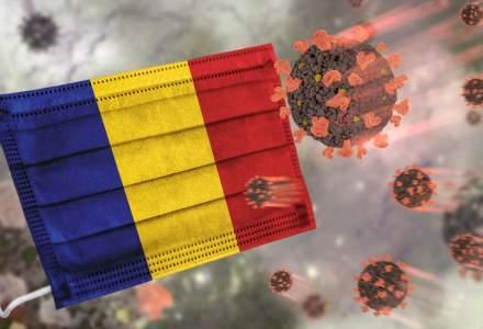 Tulpina sud-africană este în România: au fost identificate primele două cazuri