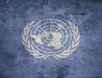 ONU: Campania mondială de...