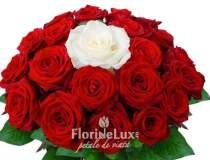 Trandafirii rosii genereaza...