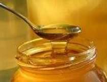 Productia autohtona de miere...