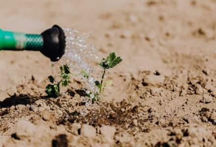 Programul care te învață să faci agricultură BIO: Cum te poți înscrie
