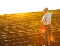Agricultura viitorului: cum...