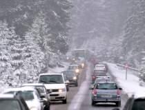 [VIDEO] Ninge abundent în...