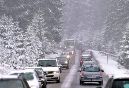 [VIDEO] Ninge abundent în zona Rucăr-Bran