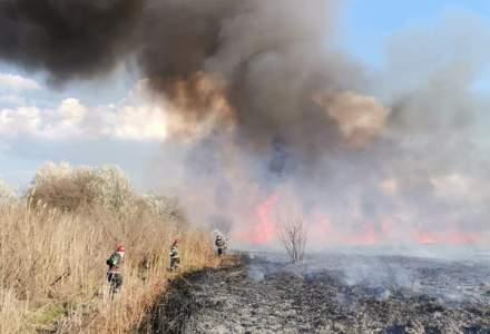 Cinci hectare de stuf au ars într-un sat din Tulcea