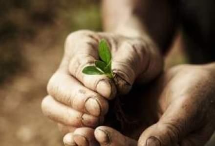 TOP: idei de afaceri de succes in agricultura