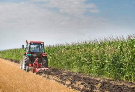Pasii pe care trebuie sa ii parcurgi pentru a cumpara un teren agricol