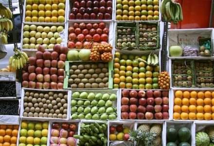 Concesiile Rusiei: alimentele pentru care se ridica interdictia la importuri