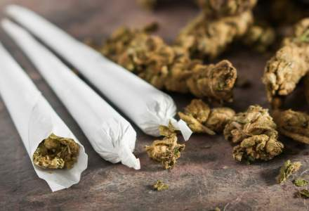 Primul stat din sudul SUA care a legalizat marijuana