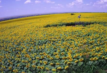 (P) Agricultura smart pentru rezultate predictibile