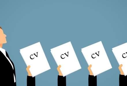Angajatori de Top: Peste 38.000 de CV-uri au fost depuse. Domeniile cu cele mai multe aplicări