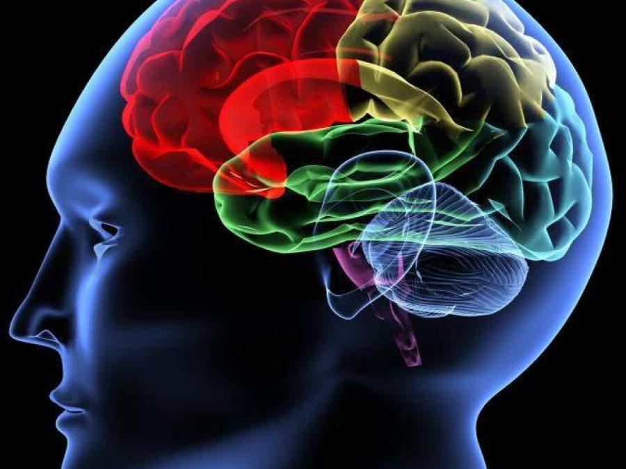 cum să faci bani cu creierul tău