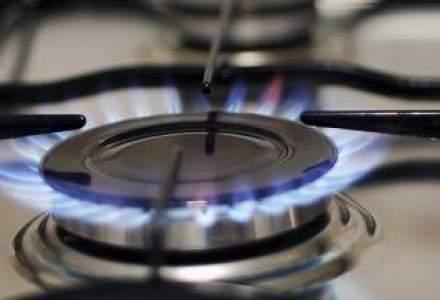 Dep. pentru Energie propune CE sa amane liberalizarea pretului gazelor pentru populatie