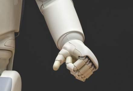 """Pași mici spre viitor: Un sfert dintre companiile mici și mijlocii din România au """"angajat"""" deja roboți software"""