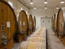 Producatorul de vinuri Vitis...
