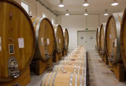 Producatorul de vinuri Vitis Metamorfosis a investit 2,8 mil. euro in prima sa crama