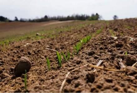 Toti fermierii pot achizitiona terenuri agricole pana la intregirea a 1.000 hectare