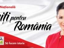 Oana Niculescu Mizil,...