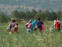 Romsilva: Legea picnicului...