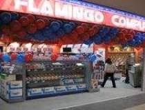 Flamingo's netbook sales soar...