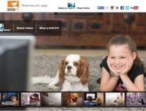 Dog TV, televiziunea dedicata...