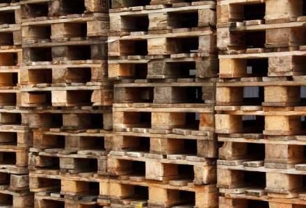 Rusia extinde embargoul asupra produselor europene: organele si fainurile animale, pe lista