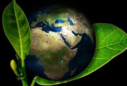 UE: Romania poate atinge tintele anului 2020 privind protectia mediului; emisiile de gaze poluante pot fi reduse cu 20%