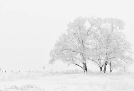 Alerta ANM: lapovita si ninsoare in aproape toata tara