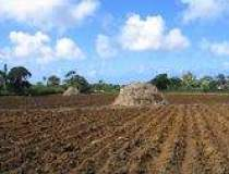 Proiecte de dezvoltare rurala...