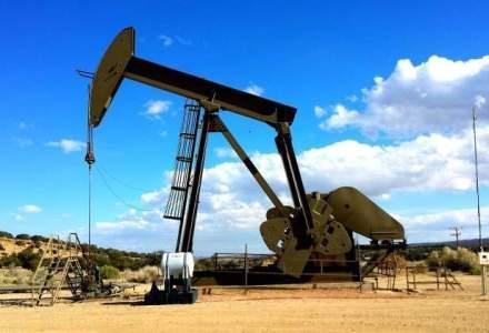 Pretul petrolului Brent a coborat sub 50 de dolari pe baril, pentru prima oara din mai 2009