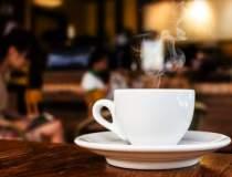Cafe Therapy, prima cafenea...