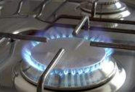 Romgaz: Productia de gaze va scadea usor in 2010