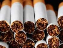 Exporturile de tigari s-au...