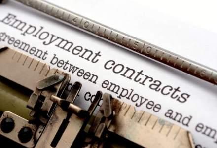 Capcanele contractului de munca: ce trebuie sa cunoasca angajatii si angajatorii